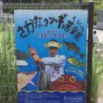 笠間日動美術館で開催!さかなクンのギョ苦楽展に行ったら楽し過ぎて爆発!【社会不適合者の人生】